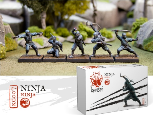 Ninjas-kensei