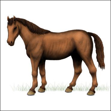 caballo-ruano