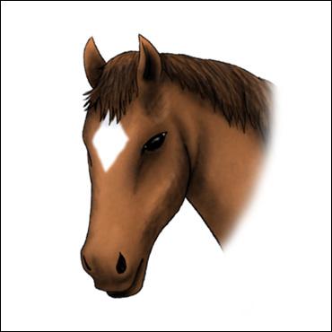 caballo-marca-careto
