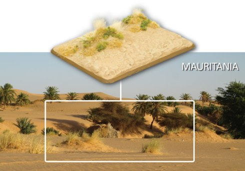 Desert-Basing-15