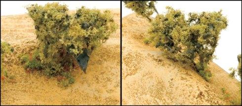 Desert-Basing-17